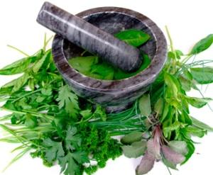 Преимущества лечения простатита травами
