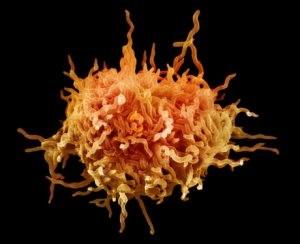 Симптомы и причины развития микоплазмоза у мужчин