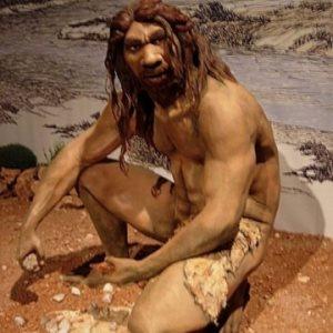 Древний человек (статья о мужской анатомии)