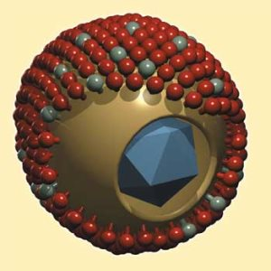Цитомегаловирус. Как проявляется у мужчин