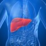 Гепатит F — чем рискуют люди?