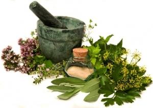 Травы и другие компоненты для народного лечения рака легких
